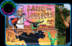 Lasso the Longhorn $275.00 DISCOUNTED PRICES